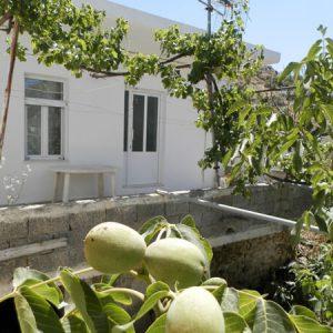 בית מסורתי 40 כרתים - סאקטוריה